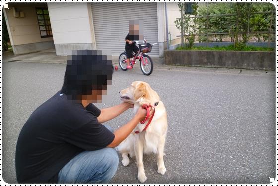 2012,9,20お散歩8