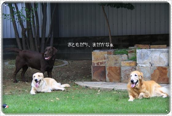 2012,9,24お友達3