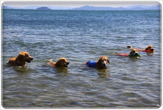 2012,9,25琵琶湖3