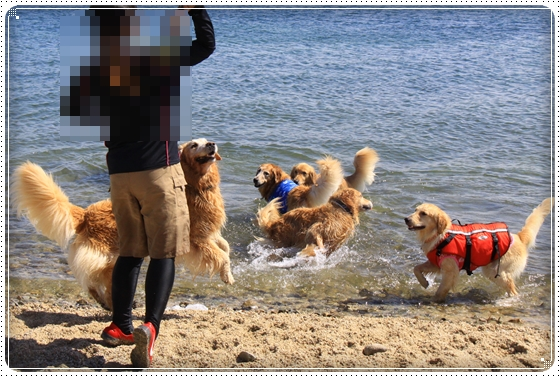 2012,9,26琵琶湖1