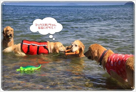 2012,9,26琵琶湖12