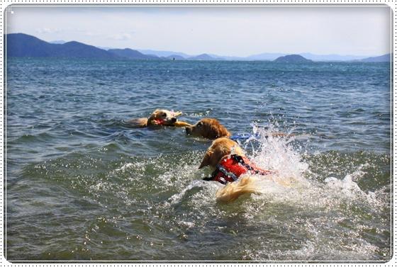 2012,9,27琵琶湖3
