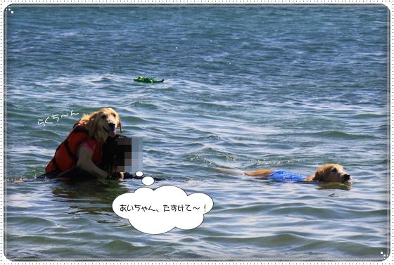 2012,9,27琵琶湖9