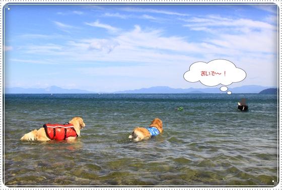 2012,9,27琵琶湖5