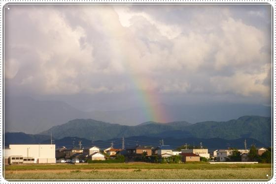 2012,10,4お散歩8