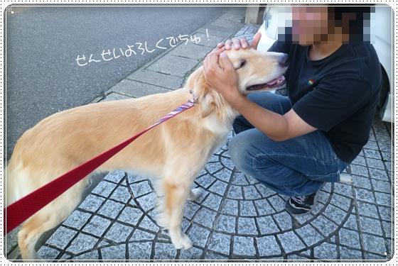 2012,10,4お散歩9