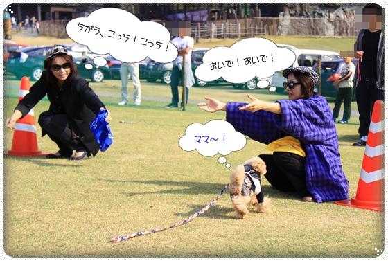 2012,10,23運動会4