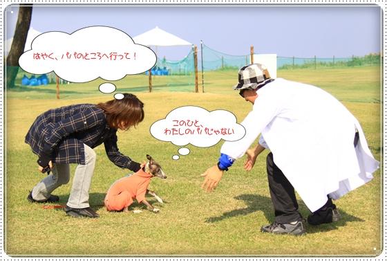 2012,10,23運動会10