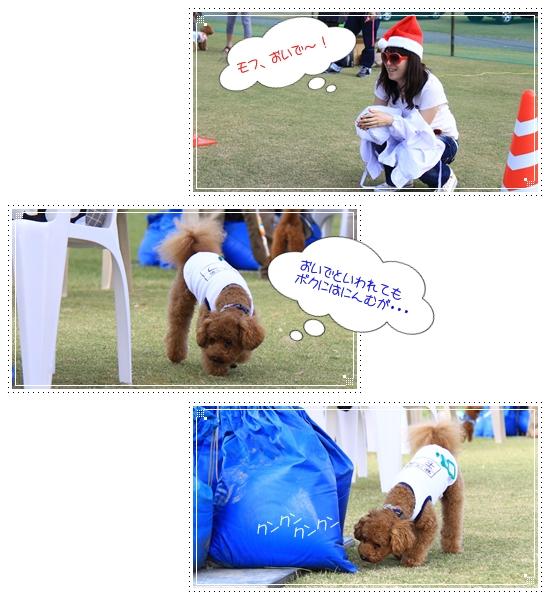2012,10,23運動会7