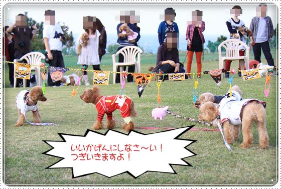 2012,10,23運動会24