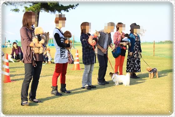 2012,10,24運動会15