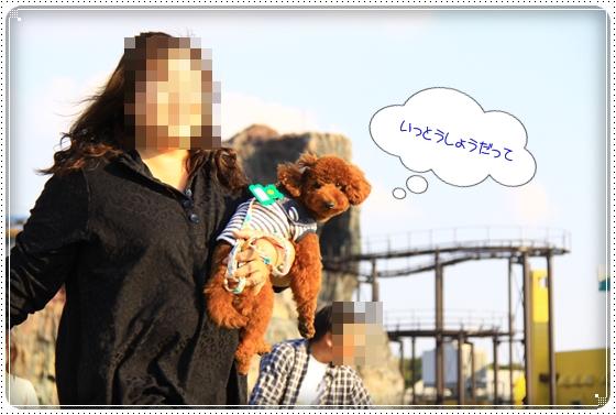2012,10,24運動会14