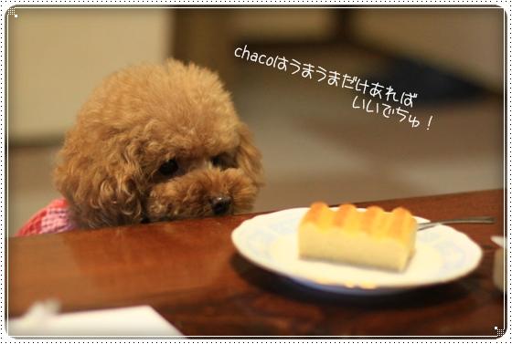 2012,11,23打ち合わせ4