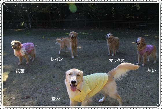 2012,11,25お誕生会3