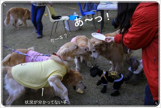 2012,11,28お誕生会8