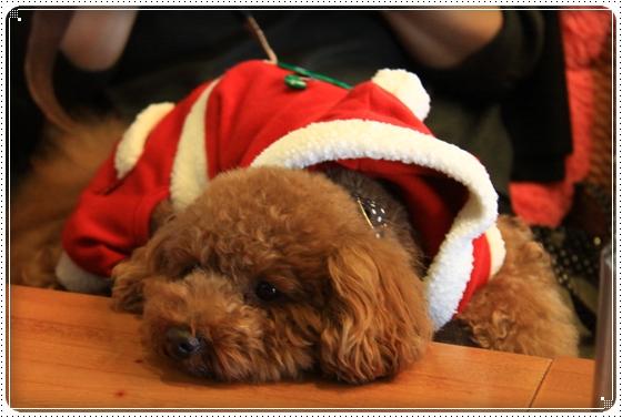 2012,12,10クリスマス会11