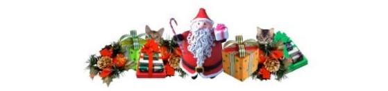 2012,12,24クリスマス2