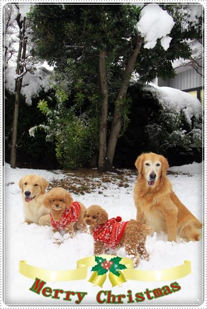 2012,12,24雪遊び14