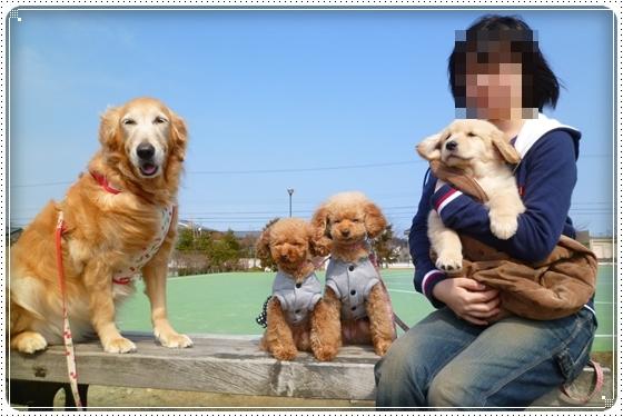 2012,12,29お散歩10