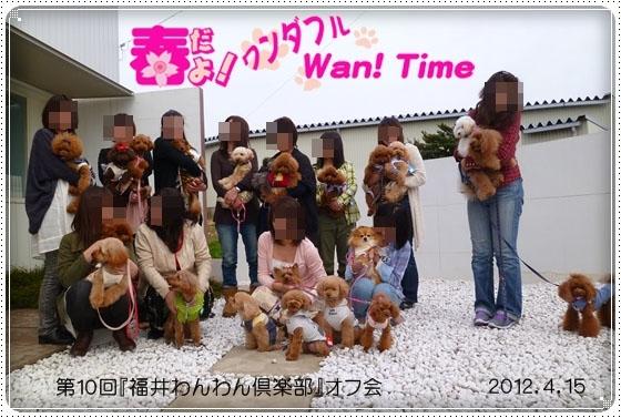 2012,12,29お散歩11