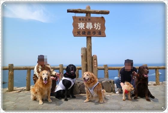 2012,12,29お散歩14