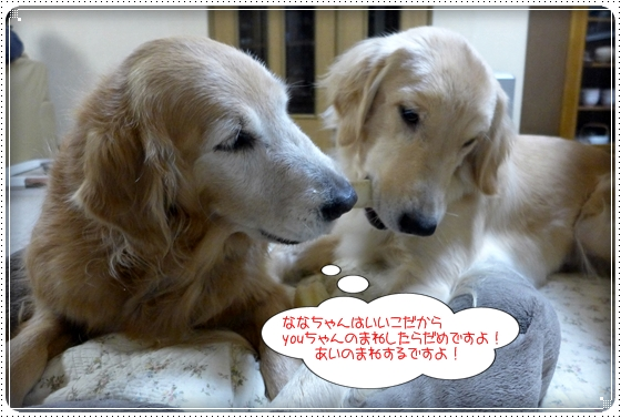 2013,1,29まねっこ4