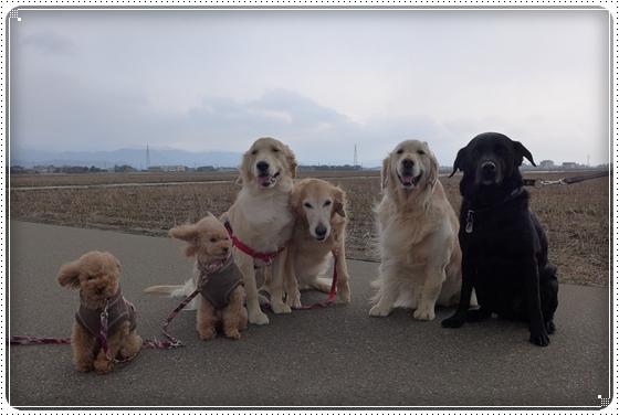 2013,2,7お散歩6