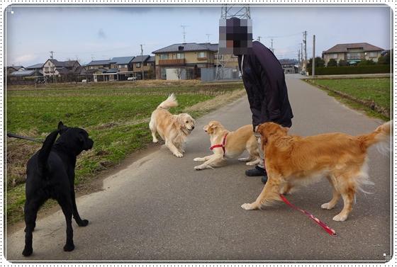 2013,2,7お散歩1