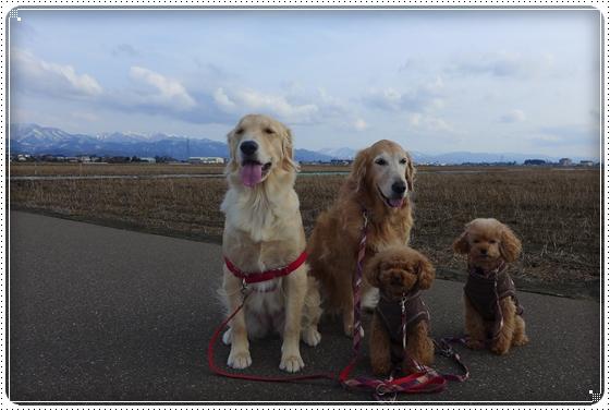 2013,2,14お散歩1