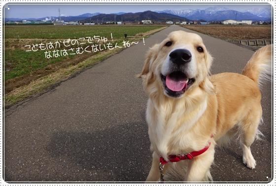 2013,2,19お散歩2