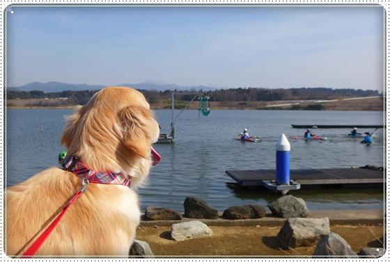 2013,3,17湖畔公園5