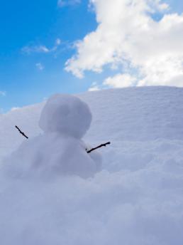 snow_20130128201336.jpg