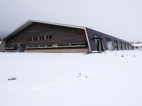 snow_aqua2.jpg