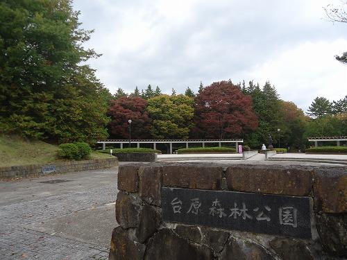 1411dainohara001.jpg