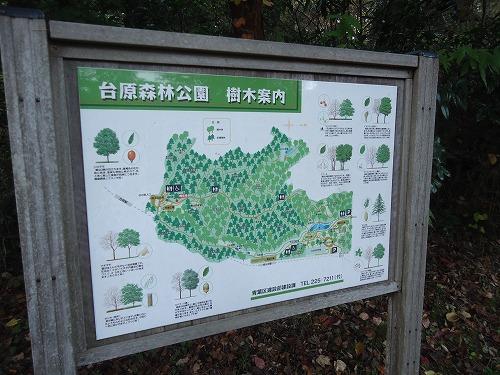 1411dainohara003.jpg