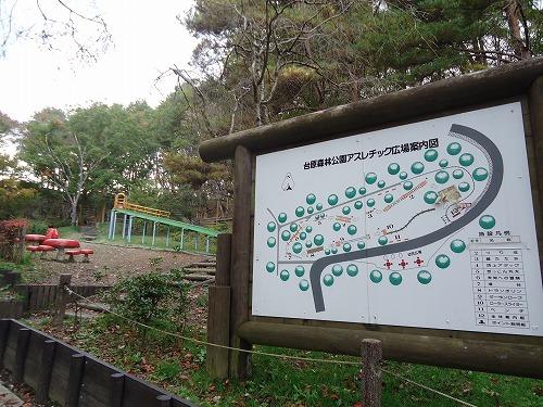 1411dainohara006.jpg