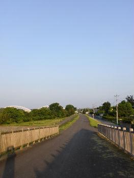 散歩道_copy