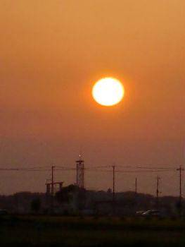 太陽1_copy
