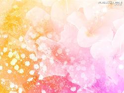 ime-ji4_copy.jpg