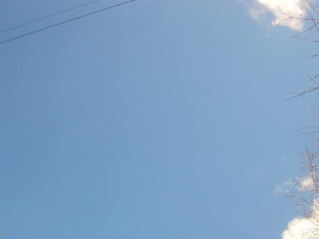 2013_0124_101331-CIMG2753.jpg