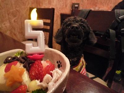 ロックちゃん/Birthday Girl2
