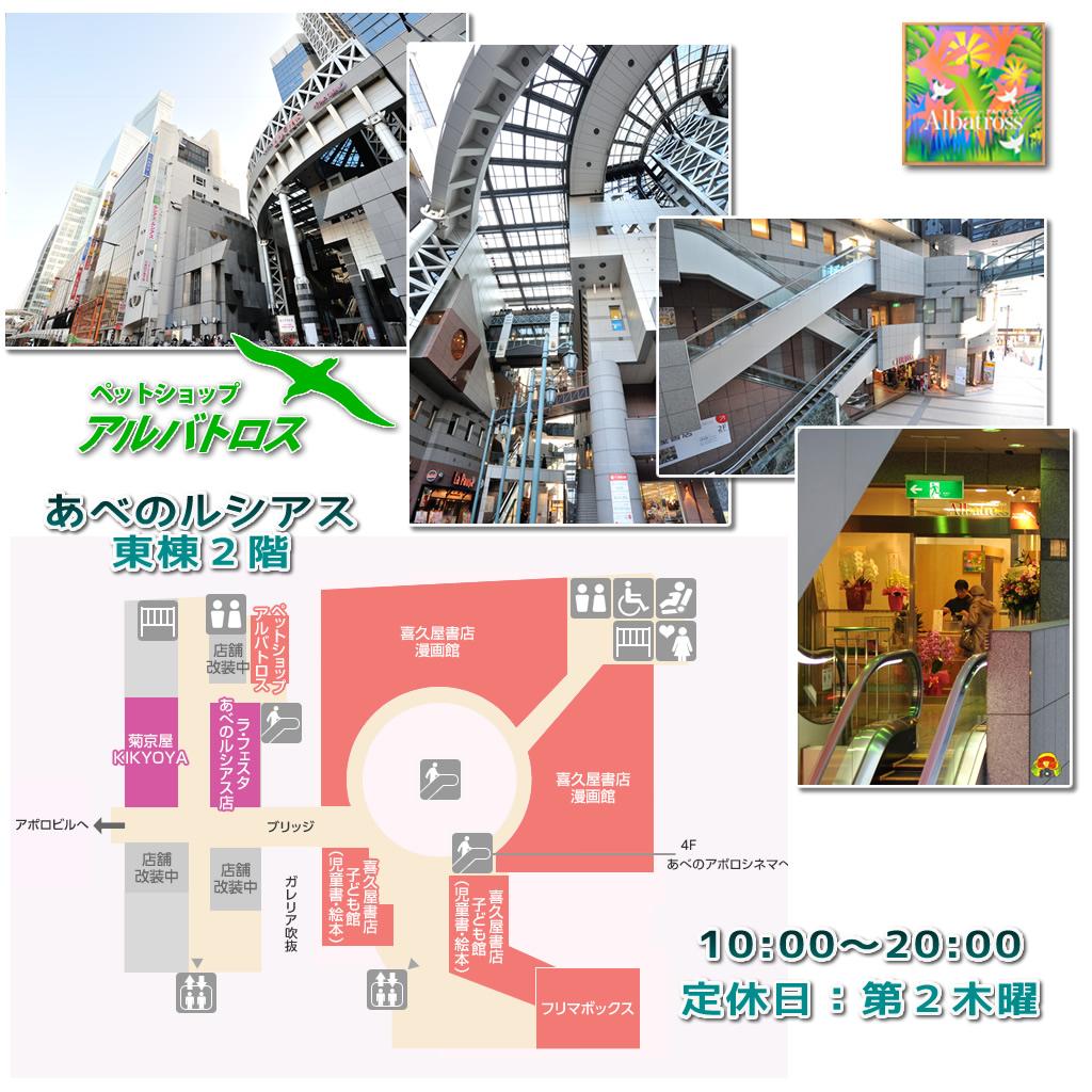 2014-02-11map.jpg