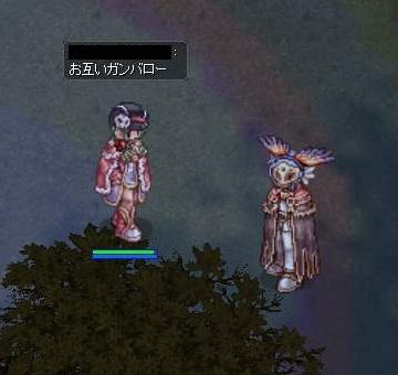 2012111010.jpg