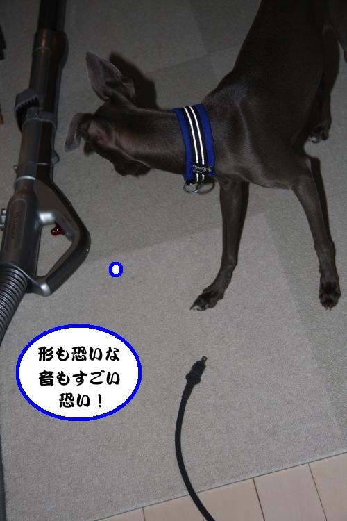 IMG_0842-1_convert_20120817221248.jpg
