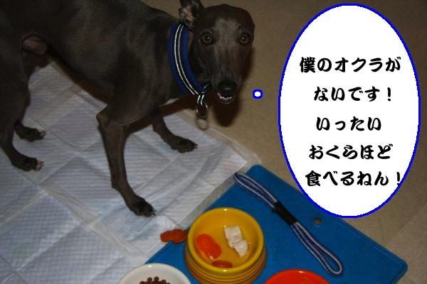 IMG_1014-1_convert_20130203214645.jpg