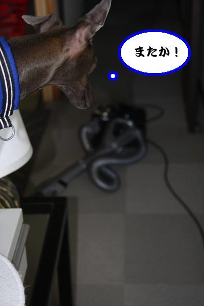 IMG_1430-1_convert_20120826222107.jpg