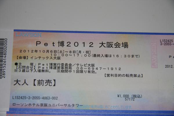 IMG_4269_convert_20121005223305.jpg
