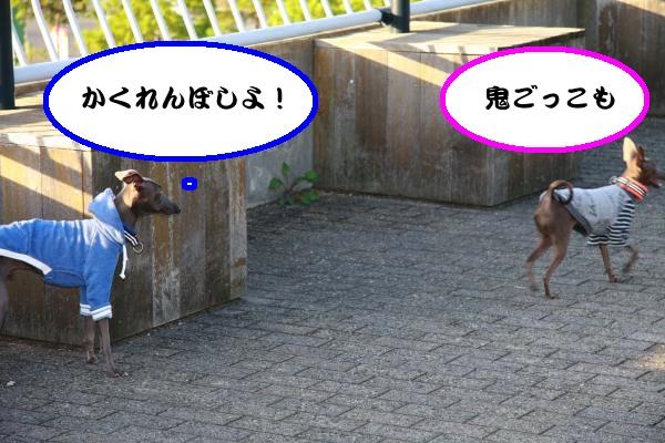 IMG_4717-1_convert_20121013084253.jpg