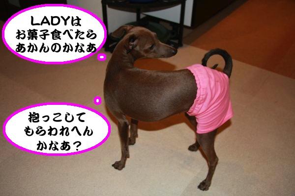 IMG_6903-1_convert_20121123231113.jpg