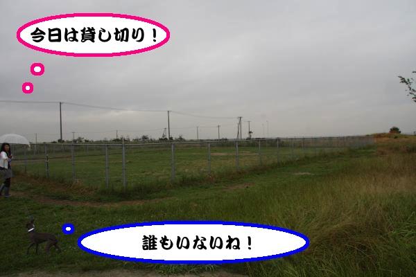 IMG_7950-1_convert_20120619153336.jpg